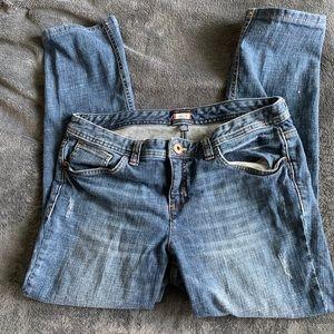 Tommy Hilfiger Modern Fit Lowrise Women's Jeans